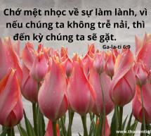 Lời Chúa Mỗi Ngày: Ga-la-ti 6:9