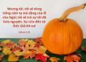 Lời Chúa Mỗi Ngày: Giô-na 2:10