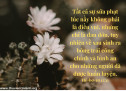 Lời Chúa Mỗi Ngày: Hê-bơ-rơ 12:11