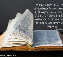 Lời Chúa Mỗi Ngày: Hê-bơ-rơ 4:12