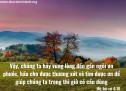 Lời Chúa Mỗi Ngày: Hê-bơ-rơ 4:16