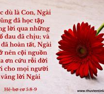 Lời Chúa Mỗi Ngày: Hê-bơ-rơ 5:8-9
