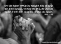 Lời Chúa Mỗi Ngày: Mác 11:25