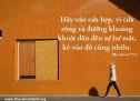 Lời Chúa Mỗi Ngày: Ma-thi-ơ 7:13
