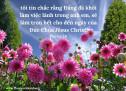Lời Chúa Mỗi Ngày: Phi-líp 1:6
