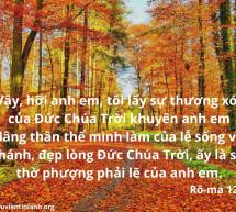 Lời Chúa Mỗi Ngày: Rô-ma 12:1