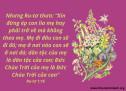 Lời Chúa Mỗi Ngày: Ru-tơ 1:16