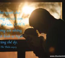 Lời Chúa Mỗi Ngày: Thi Thiên 103:13