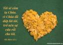Lời Chúa Mỗi Ngày: Thi Thiên 118:21