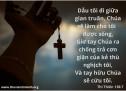Lời Chúa Mỗi Ngày: Thi Thiên 138:7
