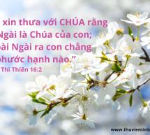 Lời Chúa Mỗi Ngày: Thi Thiên 16:2