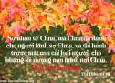 Lời Chúa Mỗi Ngày: Thi Thiên 31:19