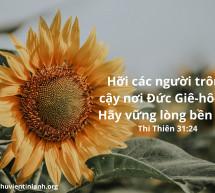 Lời Chúa Mỗi Ngày: Thi Thiên 31:24
