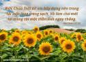 Lời Chúa Mỗi Ngày: Thi Thiên 51:10