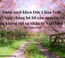 Lời Chúa Mỗi Ngày: Thi Thiên 66:20