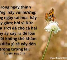 Lời Chúa Mỗi Ngày: Truyền Đạo 7:14