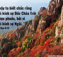 Lời Chúa Mỗi Ngày: Truyền Đạo 8:12