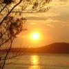 Tùng Sơn: Chiến Thắng Ca