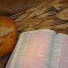 Cùng Học Kinh Thánh – Giăng 13:12-17
