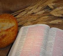 Hiệp Nhất Trong Chúa