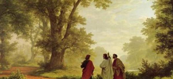 Nghiên Cứu Thánh Kinh: Ê-phê-sô 5:15-17