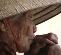 Tường Lưu: Thơ Về Mẹ