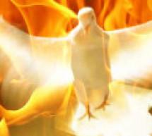 Kiến Thức: Đức Thánh Linh Trong Các Sách Văn  Thơ Và Tiên Tri
