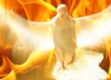 Kiến Thức: Đức Thánh Linh Trong Sách Công Vụ