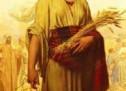 Tìm Hiểu Kinh Thánh: Sách Ru-tơ