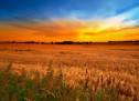 Thánh Ca Nga: Trời Mới Đất Mới