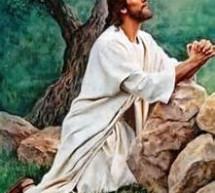 Nỗi Lòng Của Chúa