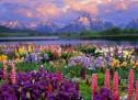 Dâng Chúa Mùa Xuân