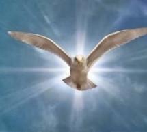 Mục sư Đặng Ngọc Báu: Tìm Hiểu Về Đức Thánh Linh