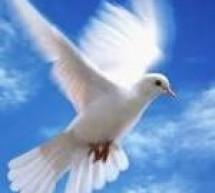 Đầy Dẫy Đức Thánh Linh