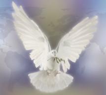 Spirit Song