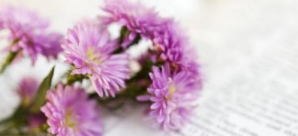 Mục sư Võ Ngọc Thiên Ân: Ngày Lễ Mẹ