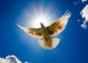 Tìm Hiểu: Đức Thánh Linh