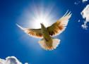Xin Thần Linh Đến