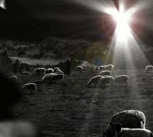 Thánh Ca: Tiếng Hát Thiên Binh