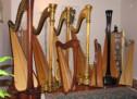 Thánh Ca: Đờn Vàng Reo