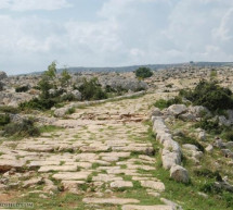 Tìm Hiểu Kinh Thánh: Sách I Tê-sa-lô-ni-ca
