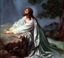 Sự Thương Khó Của Chúa