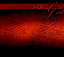 Phim Tài Liệu: William Tyndale – Người Tiên Phong Phiên Dịch Kinh Thánh Sang Tiếng Anh