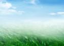 Kiến Thức: Biểu Tượng Về Đức Thánh Linh – Gió