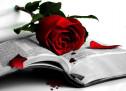 Cùng Học Kinh Thánh: I Cô-rinh-tô 13:8-13