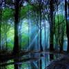 Tường Lưu: Kỳ Công Của Chúa