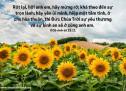 Lời Chúa Mỗi Ngày: II Cô-rinh-tô 13:31