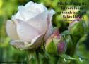 Lời Chúa Mỗi Ngày: Ca Thương 3:23