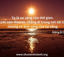 Lời Chúa Mỗi Ngày: Giăng 8:12