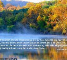 Lời Chúa Mỗi Ngày: Phi-líp 4:6-7